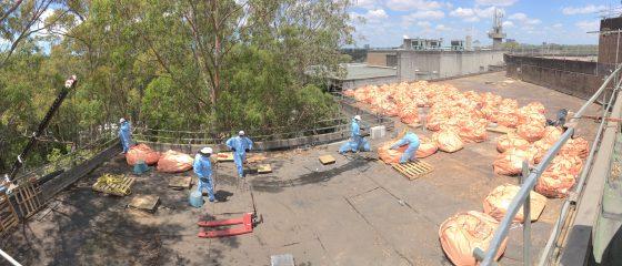 Hazmat removal contractor Sydney - Perfect Contracting