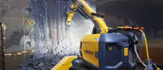 Detail Demolition & Strip Outs